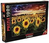 Anatolian Field of Sunflowers At Dusk Jigsaw Puzzle (1000 Piece)