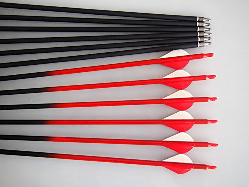 GPPOutdoors Carbon 30-Inch Red Shaft Arrows with Field Points Replaceable Tips (12 Pack) for Recuve Bow & Compound Bow (And Bow Red Arrow)