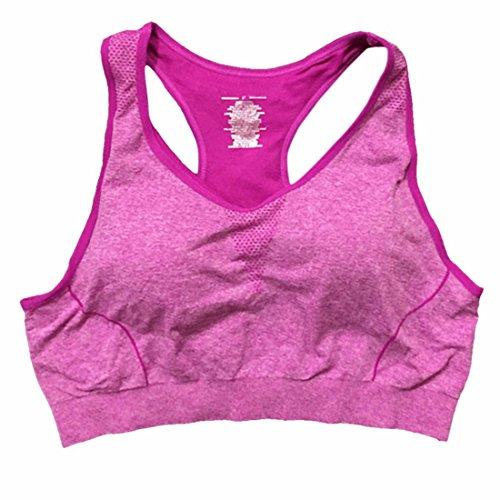 QIYUN.Z Aptitud De Las Mujeres De Yoga Entrenamiento Tramo Superior Del Tanque Del Racerback Transparente Acolchado Sujetador Deportivo Purpura