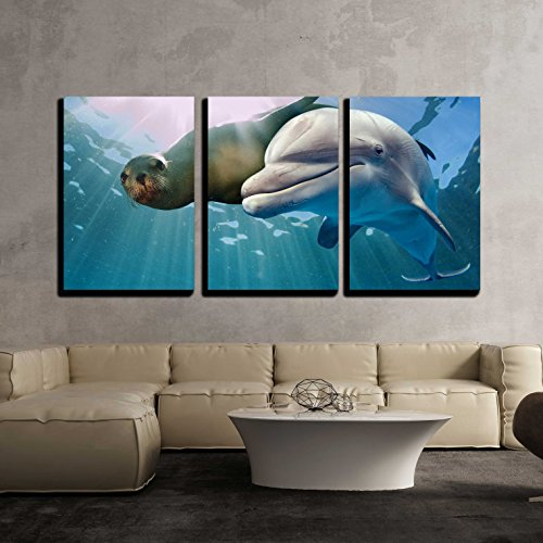 wall26 - 3 Piece Canvas Wall Art - Dolphin and Sea Lion Underwater on Ocean Background Looking at You - Modern Home Decor Stretched and Framed Ready to Hang - 24