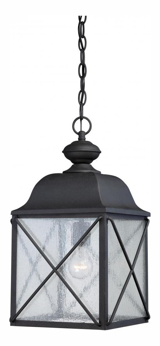 Wingate 1 Lt Outdoor Hanging Fixture W/ Clear Seed Glass by Nuvo