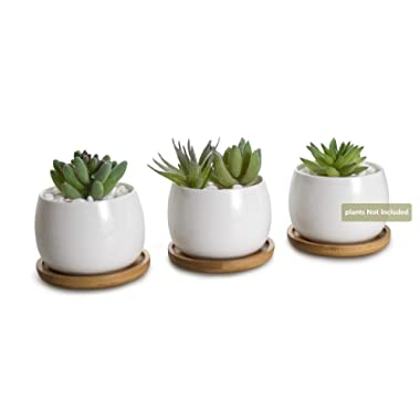 Opps White Ceramic Cute Succulent Cactus Plant Pot with Bamboo Tray – Pack of 3