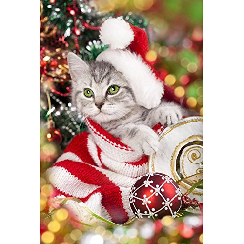 Wizland Christmas 5D DIY Diamond Painting Full Drill Round Resin Beads Pictures Santa Pet Cat of Crystals Diamond Dotz Kits,Arts, Crafts & Sewing Cross Stitch for Festival Home Decor by Wizland