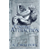 A Constant Attraction (Attraction Series Book 2)