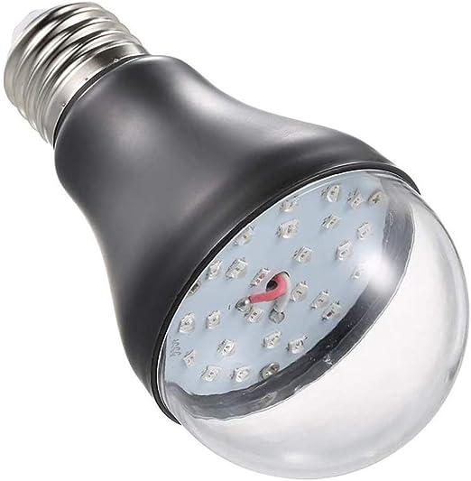 Amazon Com Germicidal Lamp Agawa Uv Cleaning Light Bulb