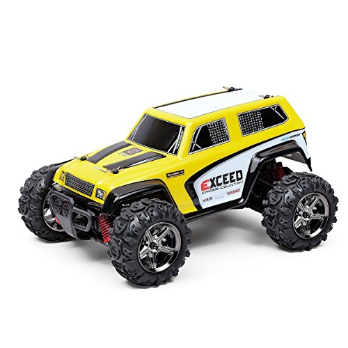 Dwi Dowellin RC Car High Speed 4WD Fast Race Cars 1:24 Scale 2.4GHz Electric Vehicle with Rechargeable Battery Truck BG1510D - 4wd Race