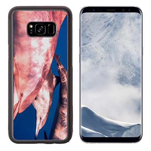 Liili Premium Samsung Galaxy S8 Plus Aluminum Backplate Bumper Snap Case IMAGE ID: 24583772 three dolphins and blue sea while diving