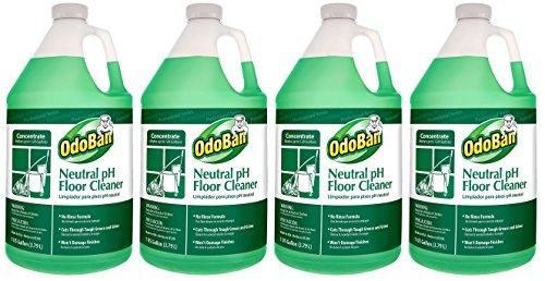 Amazon.com: OdoBan 936162 G Neutral PH Floor Cleaner Concentrate, 1 Gallon  Bottle: Industrial U0026 Scientific