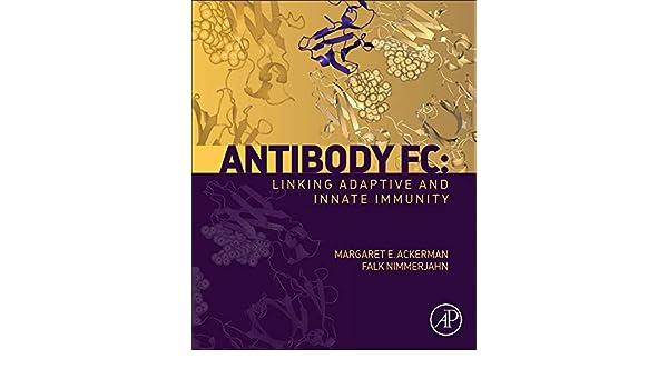 Antibody Fc: Linking Adaptive and Innate Immunity