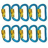 Fusion Climb Swift Aluminum Triple Lock Modified D Shape High Strength Carabiner 10-Pack