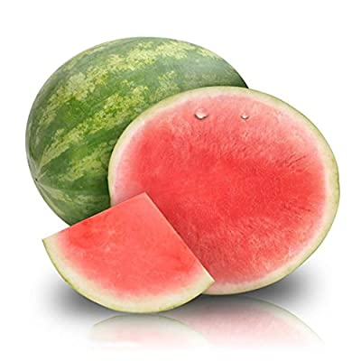 LEANO 30pcs Seedless Watermelon Seeds for Planting, Sweet Fruit Melon Seeds Home Garden : Garden & Outdoor
