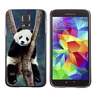 Cute Painting Slim pc Cover - Samsung Galaxy S5 ( Cute Panda )