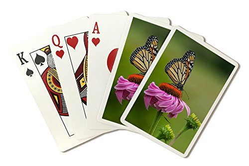 Monarch Butterfly and Flower (Playing Card Deck - 52 Card Poker Size with Jokers)
