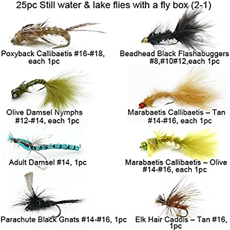 Free Fly Box 23 Piece Terrestrial Fly Fishing Fly Collection