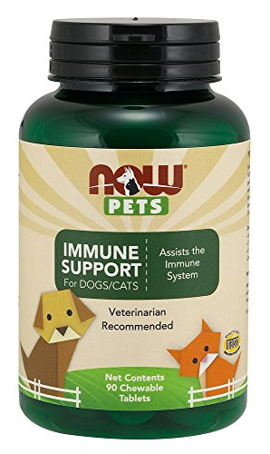 Foods Immune Support Chewable Tablets