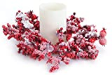 Club Pack of 12 Artificial Red Mixed Berry Christmas Pillar Candle Rings 10''
