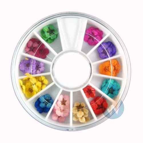 Nail Art Accessories Real Dry Dried Flowers 12 Colors Bundle Set in Wheel - Ready to Use by Wenettion