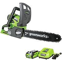 Greenworks 12
