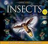 Insects, Philip Steele, 1592239390