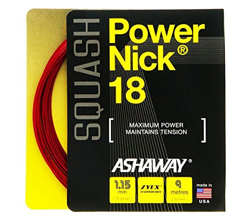 (Ashaway POWERNICK 18 Squash String Set)