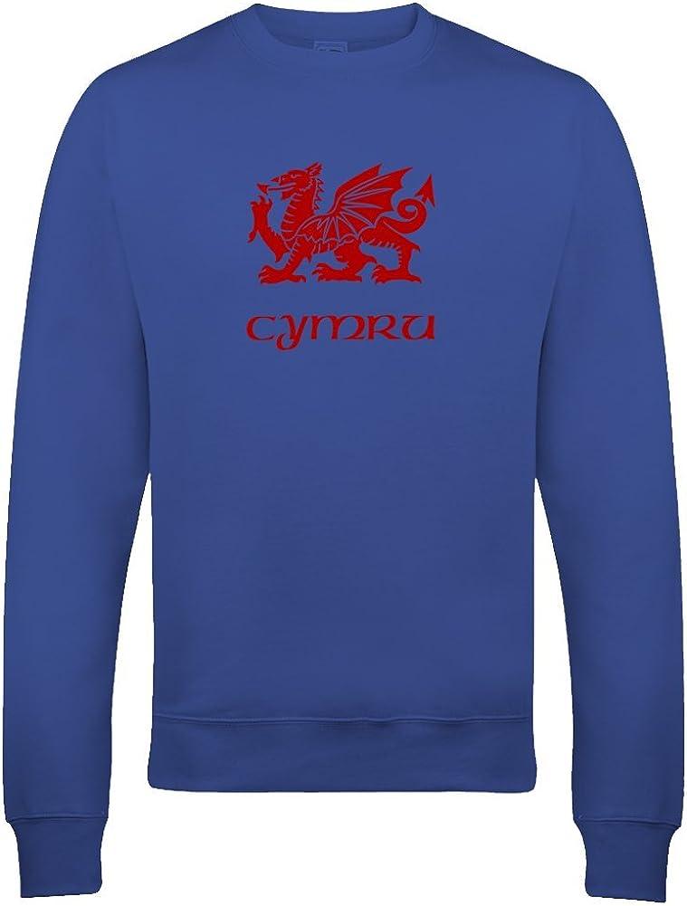Welsh Regional Pride Graphic Youth Girls Sweatshirt Ice-Tees Cymru Flag of Wales