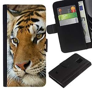 All Phone Most Case / Oferta Especial Cáscara Funda de cuero Monedero Cubierta de proteccion Caso / Wallet Case for Samsung Galaxy S5 Mini, SM-G800 // Tiger Cute Feline Animal Orange Africa