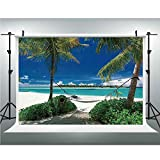 Photo Studio,Holiday Decorations,Muslin Collapsible Backdrop Background for Photography, Video and Television,6.5x6.5ft,Hammock Palm Trees Tropical Beach Scenic Coastline