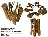 26 inch tall strangler fig wood base, great for table bases, artwork