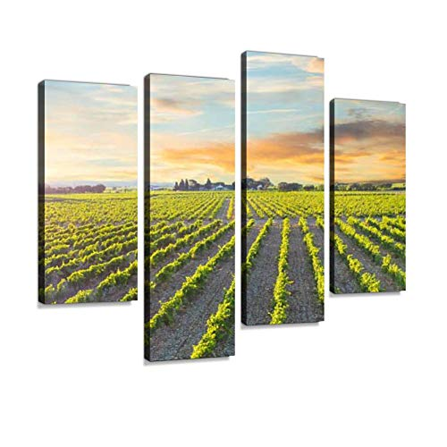 Sunrise on Vineyard in Chateauneuf du Pape, France Canvas Wall Art Hanging Paintings Modern Artwork Abstract Picture Prints Home Decoration Gift Unique Designed Framed 4 Panel