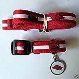 Hunter University of Arkansas Pet Combo Set (Collar, Lead, ID Tag), X-Small