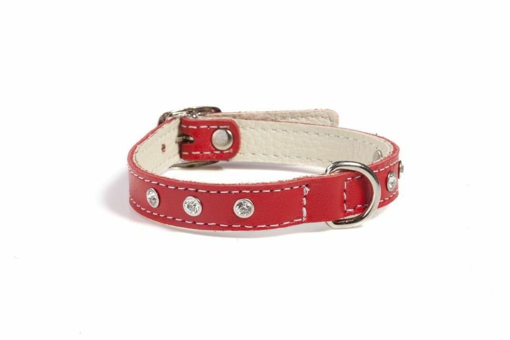 Doggy Things Fantasia Hand Made Leather Single Row Diamante Collar, 30 cm,  Red