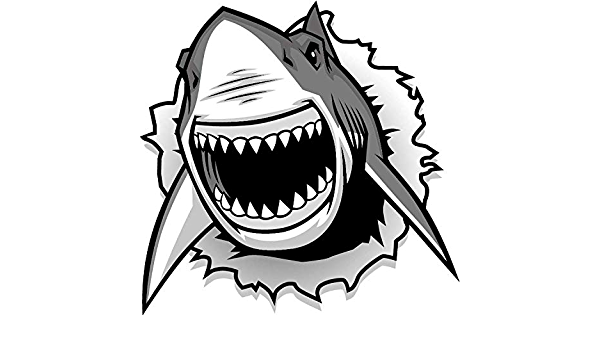 Sticker Decals Crocodile gator head mascot angry bite Vehicle A19 3RSX8