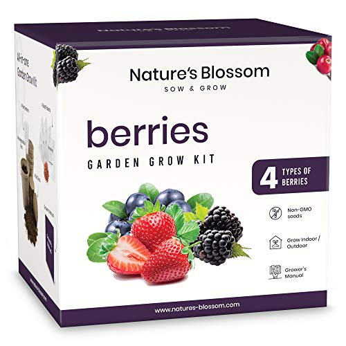 Natures Blossom Sow and Grow Berries Seed Starter Kit - Beginners Gardening Set with Everything You Need to Grow 4 Different Fruits from Organic Seed. Fun Gift Idea for Men and Women