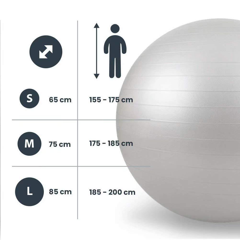 SPFAZJ Gymball Bal/ón de EjerciciosGris 80cm