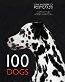 100 Dogs in a Box (Postcards)