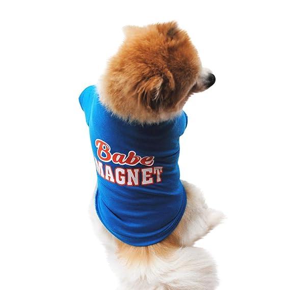 Ropa para Mascotas,Dragon868 Algodón Verano pequeño Perro Camisa Mascota Chaleco: Amazon.es: Ropa y accesorios