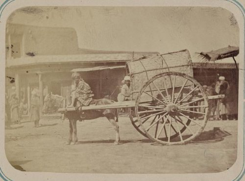 HistoricalFindings Photo: Uzbekistan,horse-drawn Kokand cart,wagon,c1865