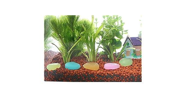 HUPLUE Piedras luminosas de resina para decorar macetas de acuario que brillan en la oscuridad, 10 unidades: Amazon.es: Hogar