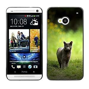 Ihec Tech CAT CAZA / Funda Case back Cover guard / for HTC One M7