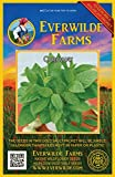 Everwilde Farms - 1 Oz Caraway Herb Seeds - Gold Vault