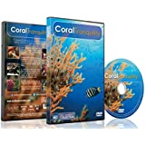 Coral Tranquility 2016 - Calming Scenes of Tropical Fishes and Relaxing Music