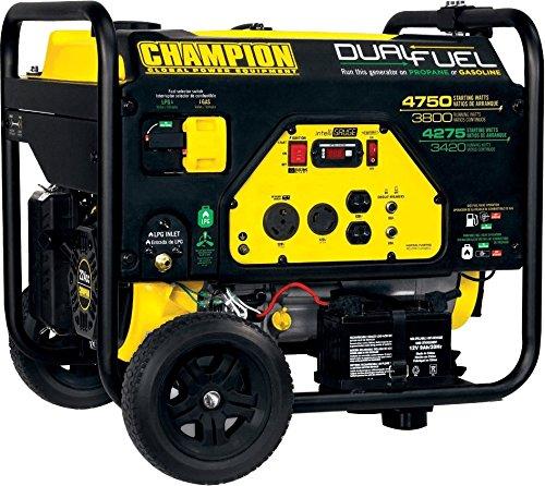Champion Power Equipment 76533 3800 Watt Dual...