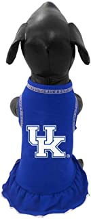 product image for NCAA Kentucky Wildcats Cheerleader Dog Dress