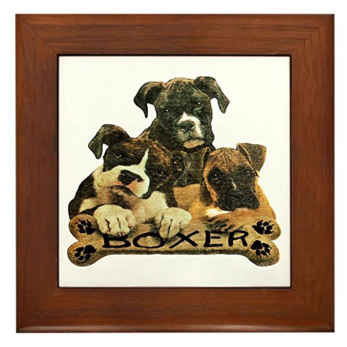 Framed Tile Boxer Trio with Bone Name Plate