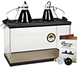 reptile starter kit with tank - Zilla 01312 10-Gallon Basic Desert Kit, 10-Inch by 20-Inch by 12-Inch