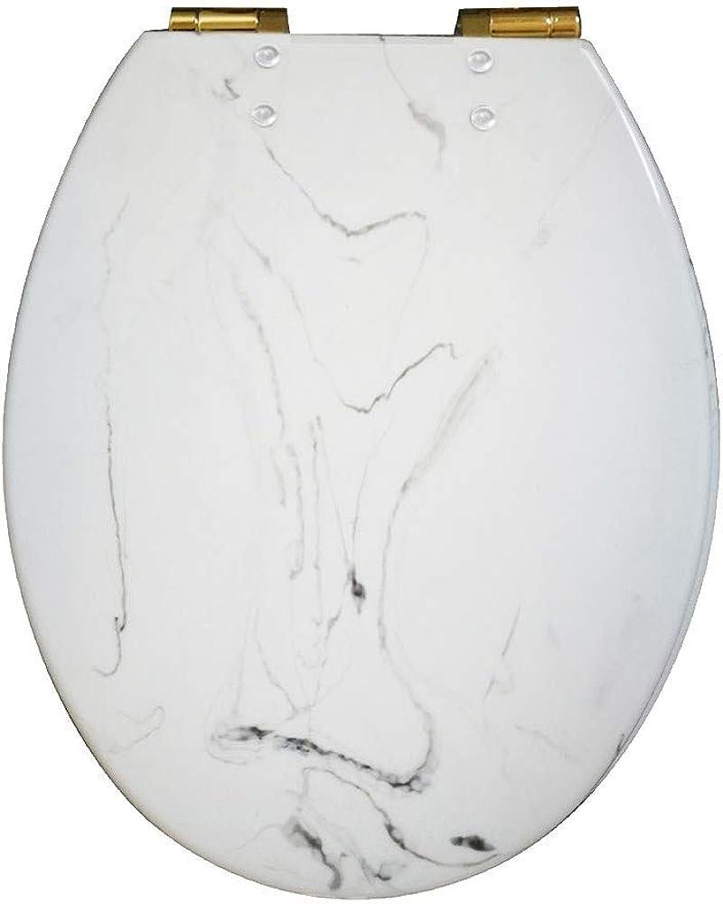 HJM Asiento De Inodoro De Primera Calidad, Cubierta De Tapa De Inodoro con Bisagra Ajustable De Cierre Suave para Baño Familiar,White