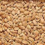 Azar Nut Unsalted Dry Roasted Peanut, 2.37 Pound - 6 per case.