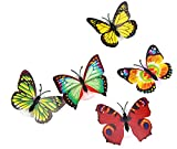Mayunn Colorful Changing Butterfly LED Night Light Lamp Home Room Party Desk Wall Decor Kids Room Bedroom Decor Living Room Decor for Christmas, Wedding,Birthday, Anniversary, Engagement (2PC)