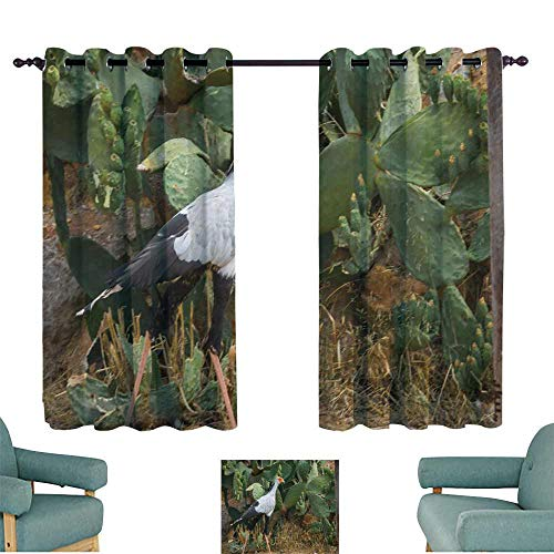 (WinfreyDecor Bedroom Windproof Curtain Bird Secretary Walking in The Park Greece Suitable for Bedroom Living Room Study, etc.55 Wx45 L)