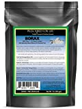 Borax - All Natural Sodium Borate 10 mol Mineral Powder, 1 lb
